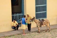 Trinidad, Cuba -Genre sketch with a donkey. Royalty Free Stock Photos