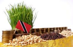 Trinidad i Tobago chorągwiany falowanie z Obrazy Royalty Free