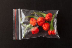 Trinidad moruga scorpion peppers Stock Photography