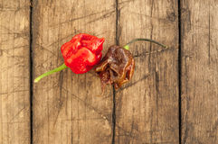 Trinidad moruga skorpionu pieprze, Zdjęcie Stock