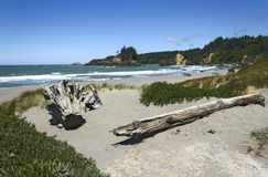 Trinidad state beach in summer, California, USA Royalty Free Stock Photos