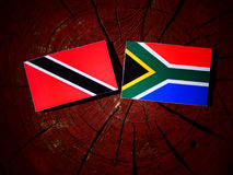 Trinidad and Tobago flag with South African flag on a tree stump Stock Images