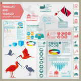 Trinidad and Tobago infographics, statistical data, sights. Scar. Let (red) ibis, national symbol. Vector illustration Royalty Free Stock Images