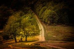 Trinité aux carrefours dans la lumière de matin d'automne Photo libre de droits