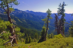 Trinity Alps Royalty Free Stock Photo