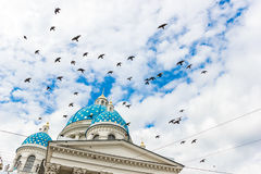 Trinity Cathedral with a birds Royalty Free Stock Photo