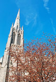 Trinity Church and a tree in Wall Street, the financial district of New York City Stock Photos