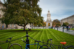 Trinity College courtyard Stock Images