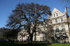 Trinity College, Dublin stock photography