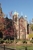 Trinity College, University of Toronto, Canada. Old building with towers and domes. Tree with red berries on the foreground royalty free stock photos