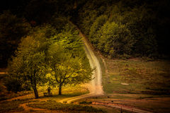 Trinity at the crossroads in autumn morning light Royalty Free Stock Photo