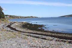 Trinity, Newfoundland,Canada Stock Images