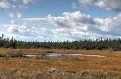 Trinity, Newfoundland,Canada Stock Photo