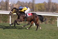 Trinity in Prague horse racing Royalty Free Stock Photo