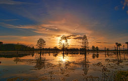Trinity. Sunrise over the Wetlands yields tremendous morning colors Royalty Free Stock Photo