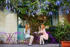 Trinkender Kaffee der Pariserinnen zusammen in einem Café im Freien mit Glyzinie in voller Blüte Lizenzfreies Stockbild