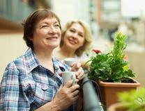 Trinkender Kaffee mit zwei Pensionären Lizenzfreies Stockfoto