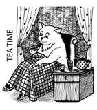 Trinkender Tee der Katze Stockbilder