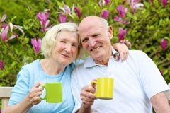 Trinkender Tee der liebevollen älteren Paare im Garten Stockfoto