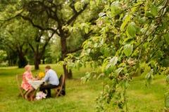 Trinkender Tee oder Kaffee der netten Paare Picknick Lizenzfreie Stockfotografie