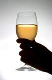 Trinkender Wein Lizenzfreie Stockfotos