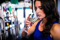 Trinkender Wein der attraktiven Frau Lizenzfreies Stockbild