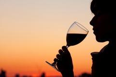 Trinkender Wein der Frau Stockfotos