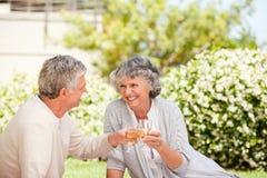 Trinkender Wein der glücklichen älteren Paare Lizenzfreies Stockbild