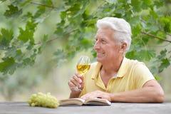 Trinkender Wein des alten Mannes und Ablesen eines Buches Lizenzfreie Stockfotos