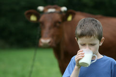 Trinkmilch stockfotos