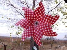 Trinquete del rojo del rosie de Morisca fotografía de archivo libre de regalías