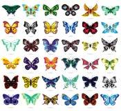 Trinta e seis borboletas coloridas no branco ilustração do vetor