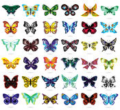 Trinta e seis borboletas coloridas no branco Imagem de Stock Royalty Free