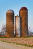 Trio aposentado dos silos Foto de Stock Royalty Free