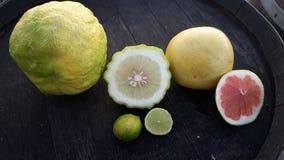 Trio av citruns Arkivbild
