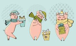 Trio av gåvor för svinjul och för nytt år stock illustrationer