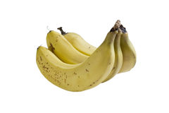 Trio of Bananas, Isolated on White Stock Image