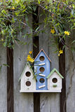 Trio of birdhouses with spring flowers. Royalty Free Stock Photo