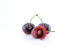 A Trio of Cherries Royalty Free Stock Image