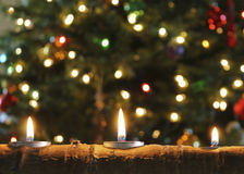A Trio of Christmas Candles in an Aspen Log Royalty Free Stock Image