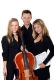 Trio clássico novo da música fotos de stock