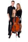 Trio classico di musica su priorità bassa bianca fotografia stock libera da diritti