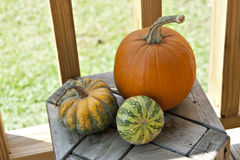Trio of colorful pumpkins on wood stool. Stock Photo