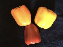 A trio of colors of bell peppers offset on a navy blue background. royalty free stock photo