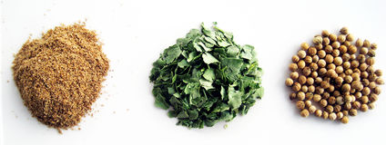 Trio coriander. Powder, carved leaves and dried coriander seeds Stock Photography