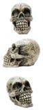 trio czaszki Fotografia Royalty Free