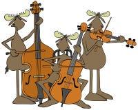 Trio de ficelle d'orignaux Photographie stock libre de droits
