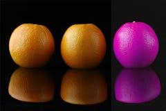 Trio del colore rosa degli aranci. .one Fotografia Stock