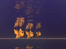 Trio del Goldfish Fotografia Stock Libera da Diritti