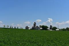 Trio del silos che circonda una fattoria in Pensilvania fotografia stock